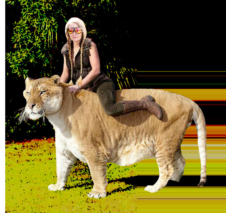 jamie liger